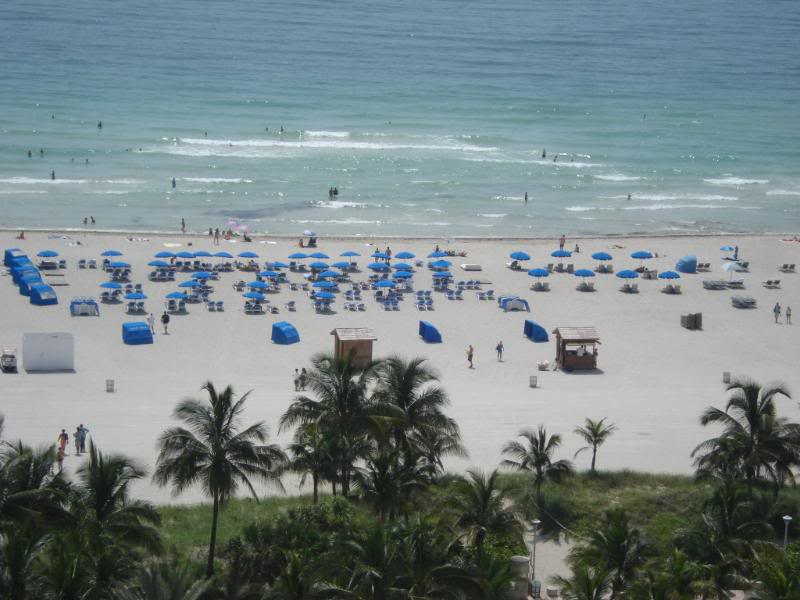 The beach outside of Loews Hotel, Miami