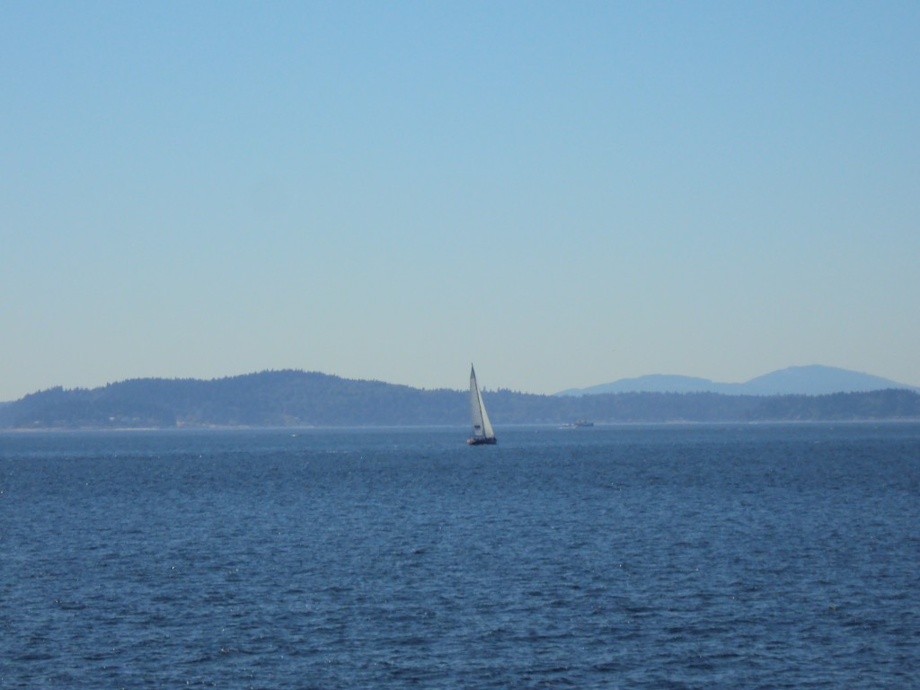 Open ocean in Seattle
