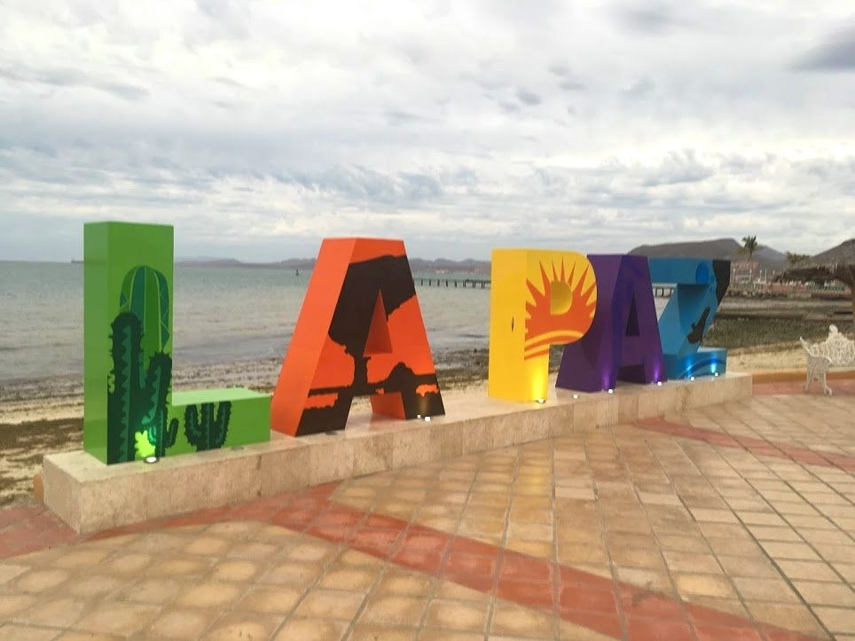 Discover Baja California - 5 Fun Things To Do In La Paz, Mexico!